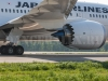 Japan Airlines JA826J Boeing Dreamliner 787-846